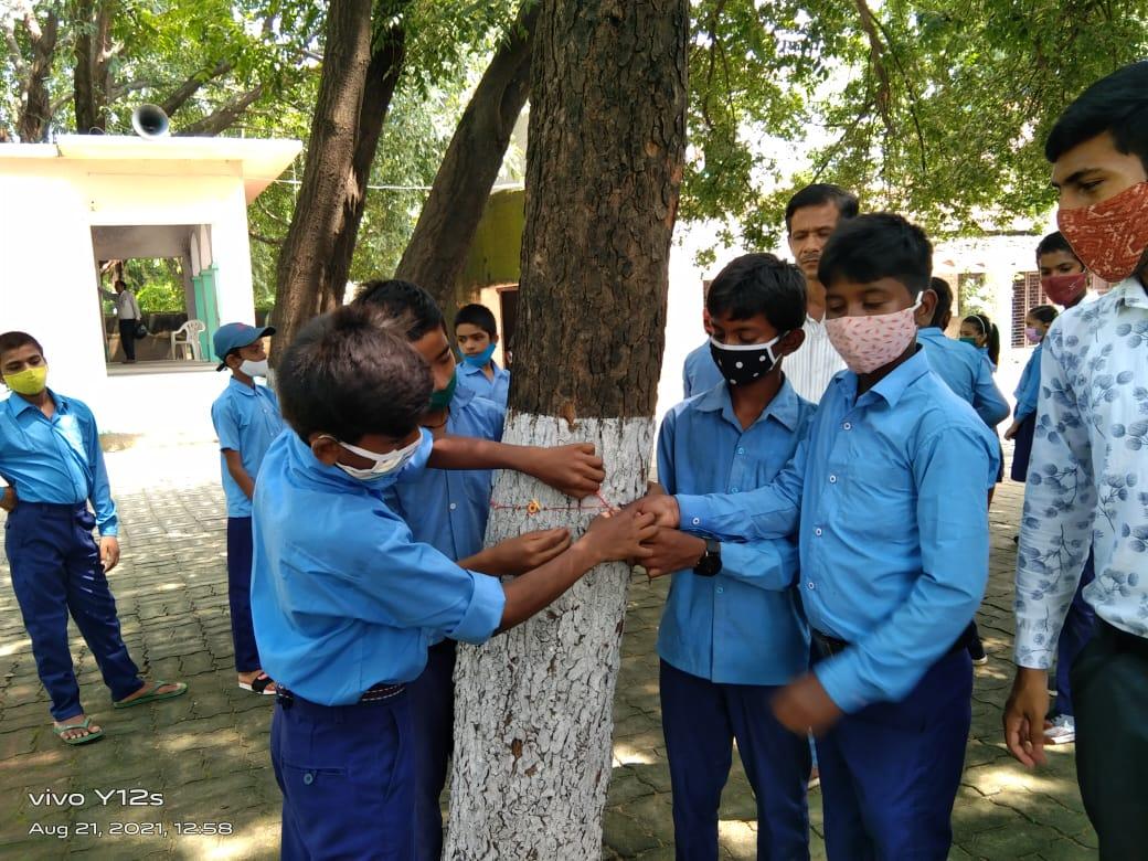 हिंदी समाचार | पेड़-पौधों को बचाने हेतु...
