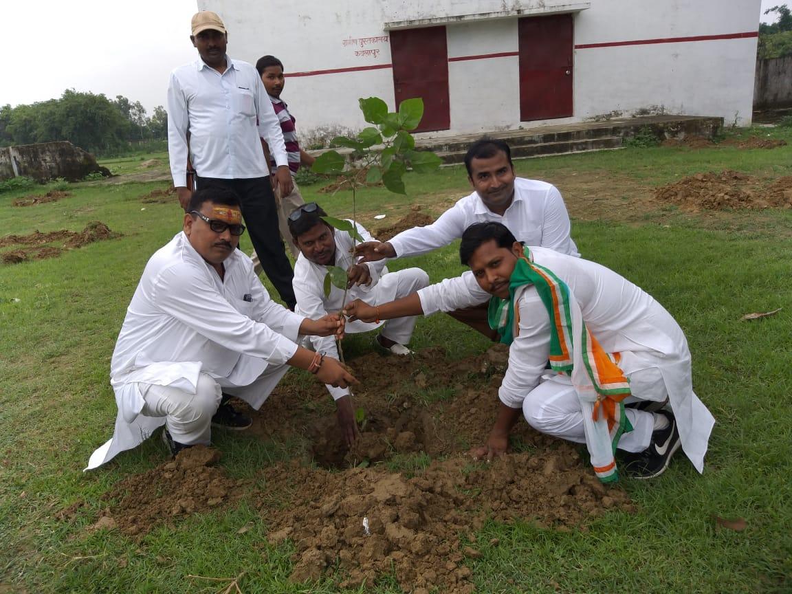 हिंदी समाचार |आदर्श गांव कौलापुर में मुख्य...