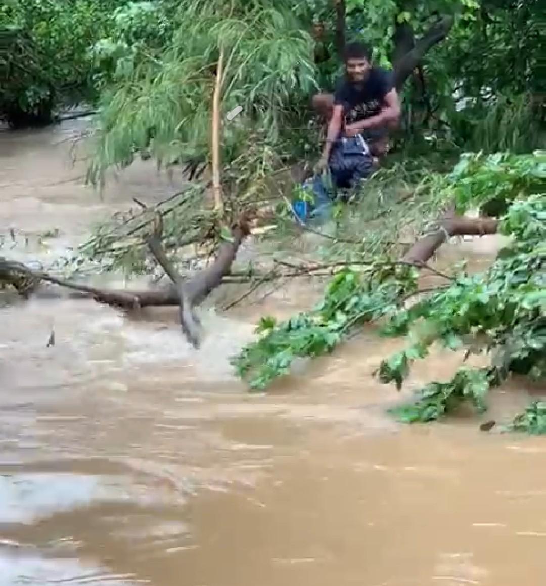 हिंदी समाचार | बरसाती पानी के बाढ में फंसे...