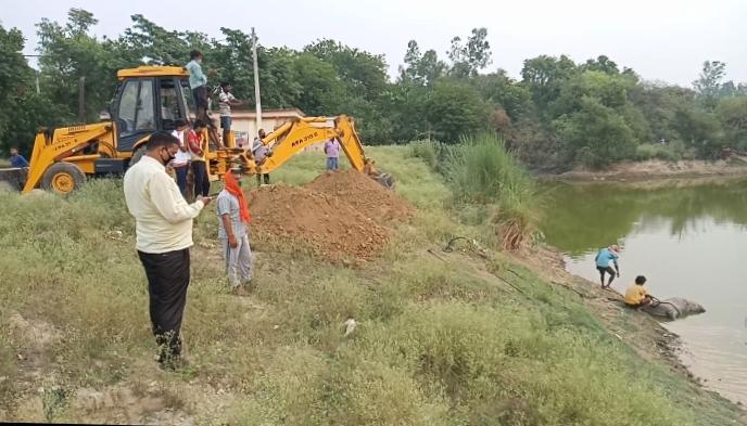 हिंदी समाचार |कौलापुर में मृत नीलगाय को वन...