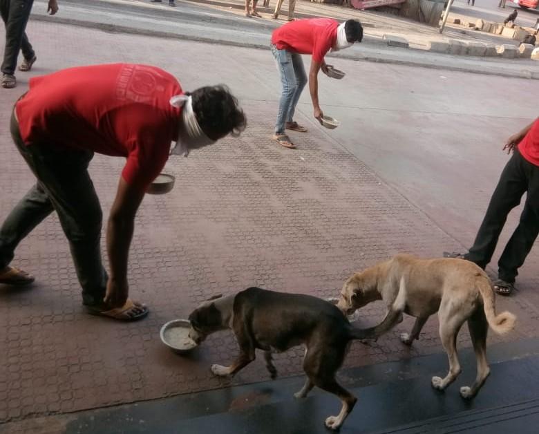 हिंदी समाचार |कल्याण डोम्बिवली मनपा आयुक्त...
