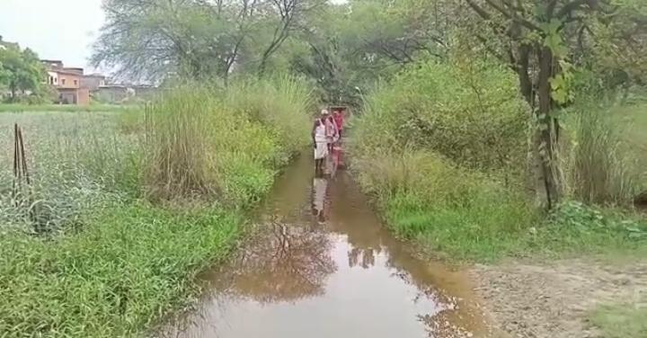 हिंदी समाचार  नगर पंचायत चिरैयाकोट में...