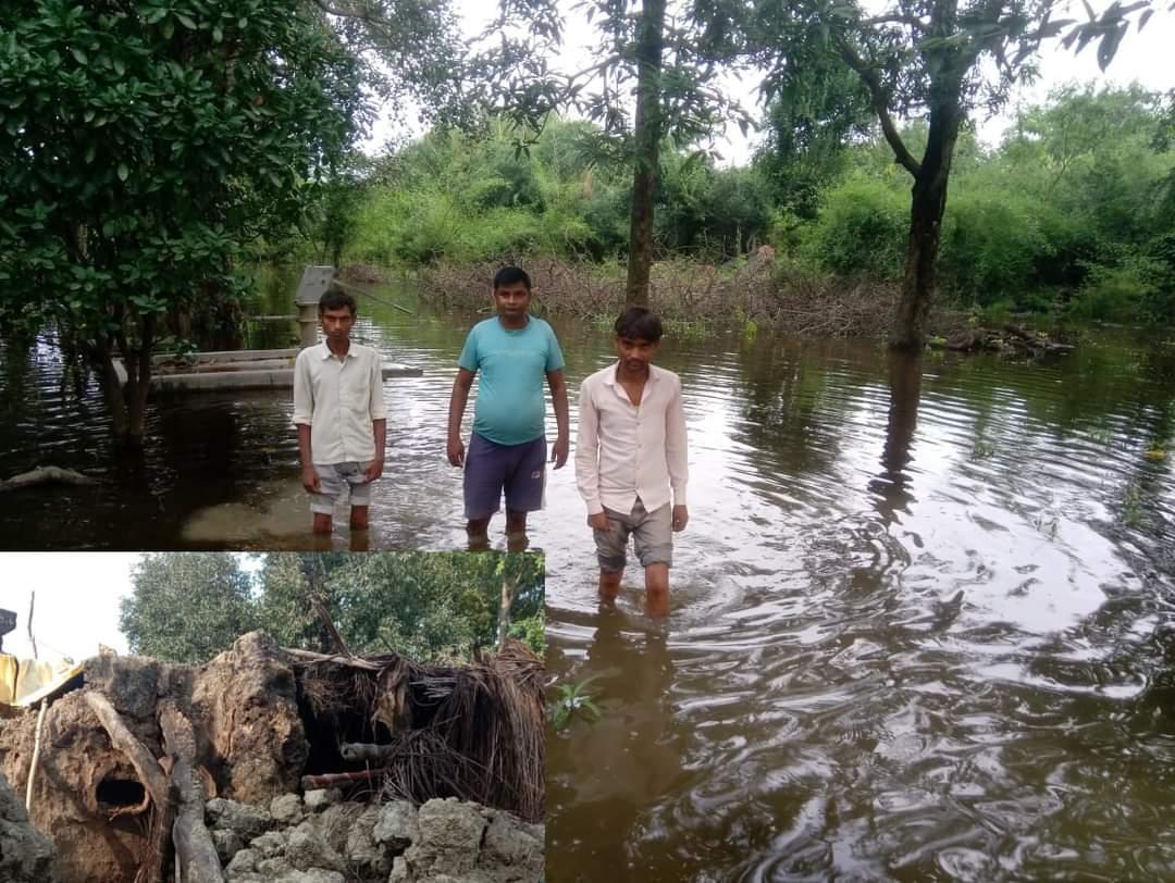 हिंदी समाचार | खदरा गांव की गलियां हुई...