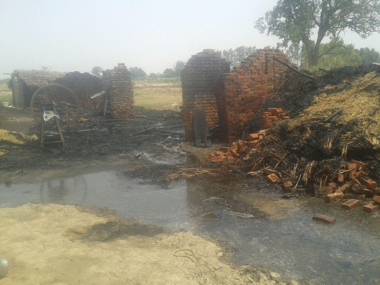 हिंदी समाचार |पट्टीनरेन्द्रपुर में आग से...