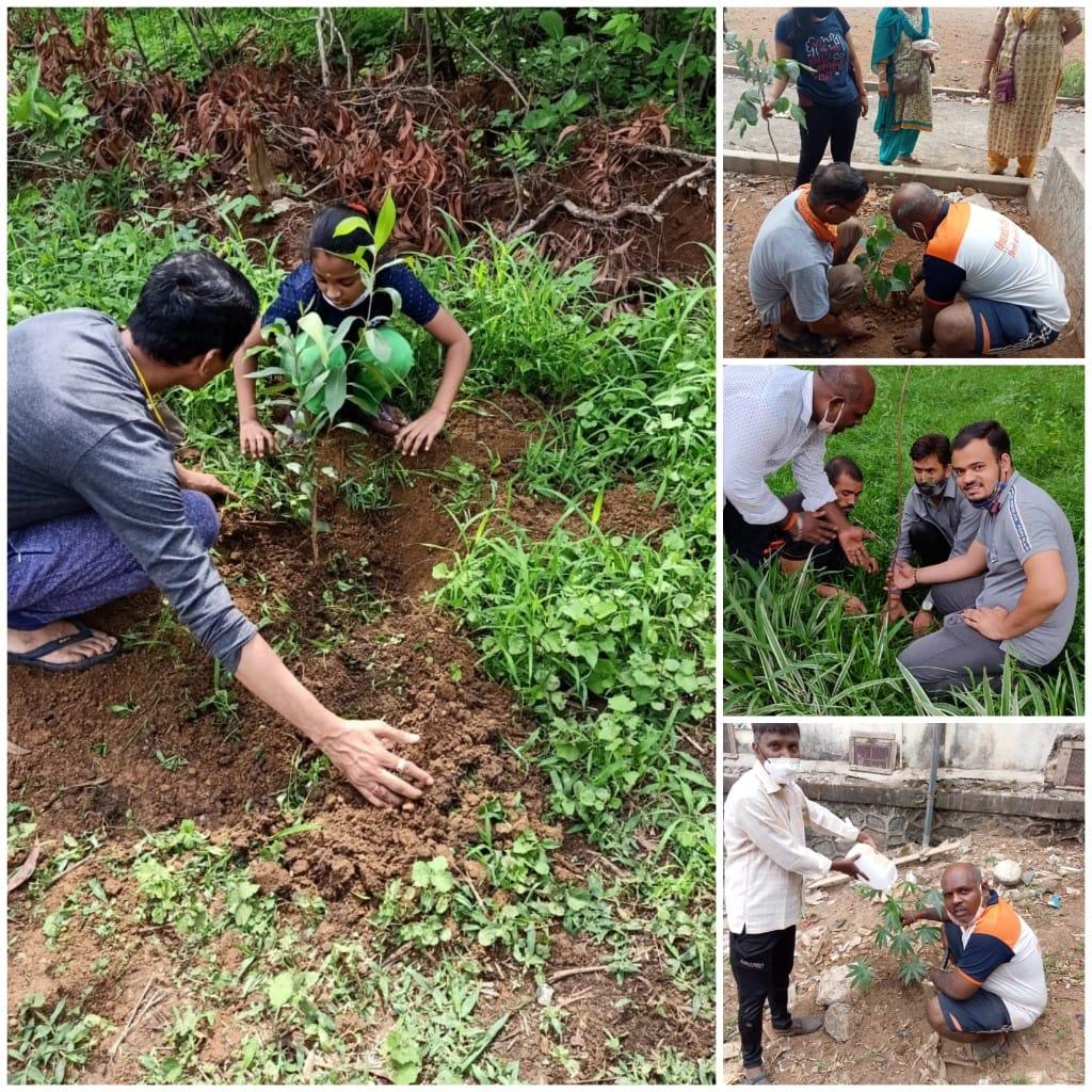 हिंदी समाचार  विश्व पर्यावरण दिवस पर...