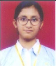 हिंदी समाचार |बाल भारती पब्लिक स्कूल, नवी...