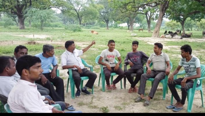 हिंदी समाचार |आवारा पशुओं से फसलों के हो रहे...