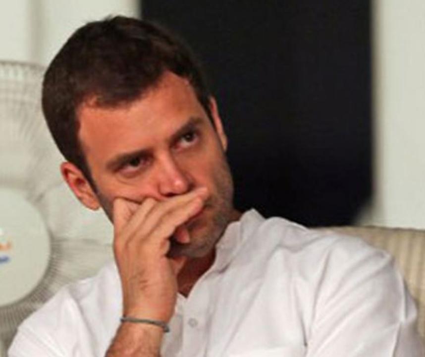 हिंदी समाचार |कांग्रेस अध्यक्ष राहुल...